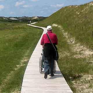 Wheelchair on path